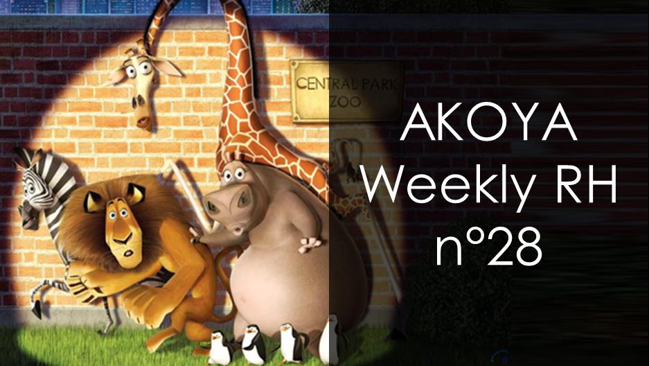 akoya weekly rh 28   marque employeur  recrutement  engagement  t u00e9l u00e9travail et    zoo